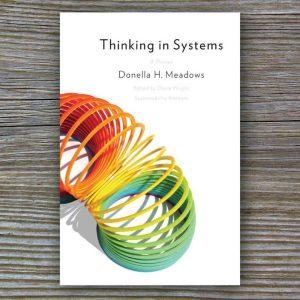 ЭТО МОЯ КНИГА: «Thinking in Systems» Донеллы Медоуз