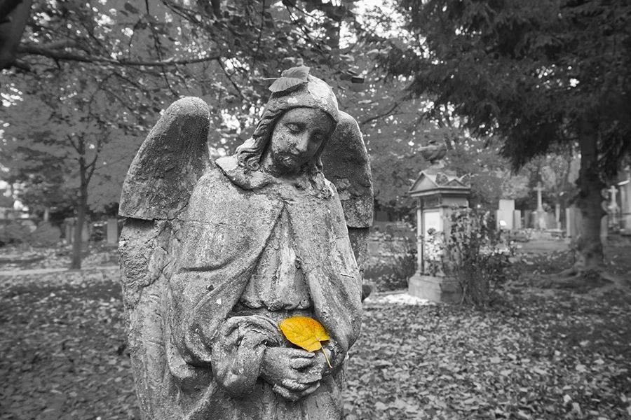 Стартапы против миллиардной индустрии старомодного похоронного бизнеса