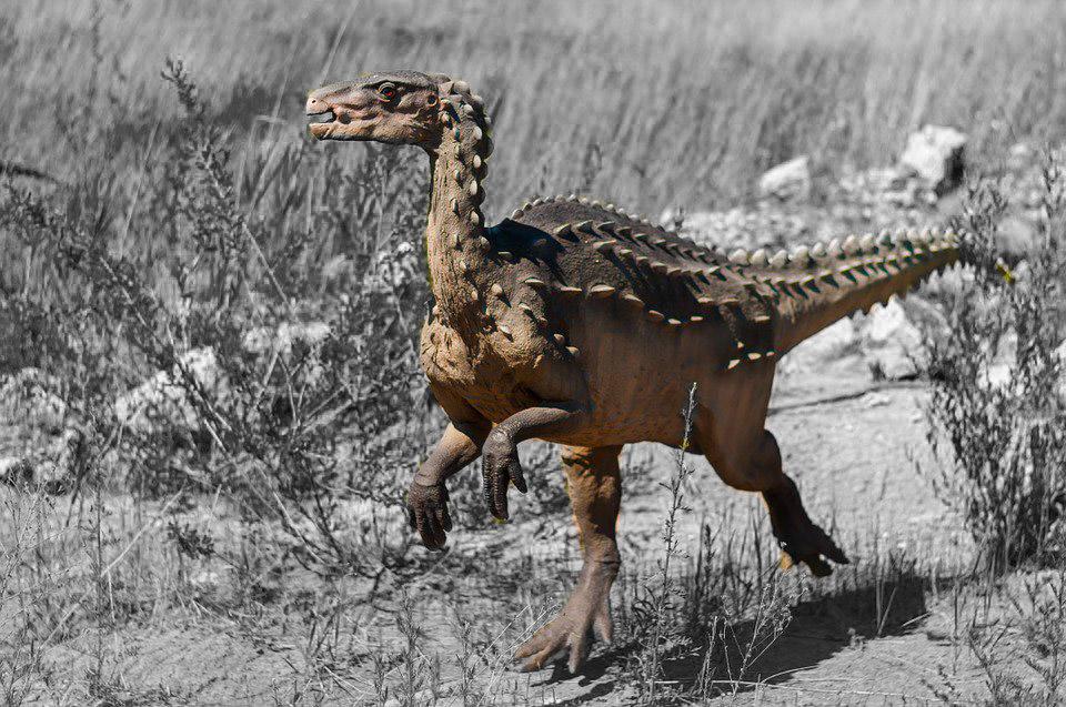 Крошечный убийца насекомых с Мадагаскара: новая глава в происхождении динозавров