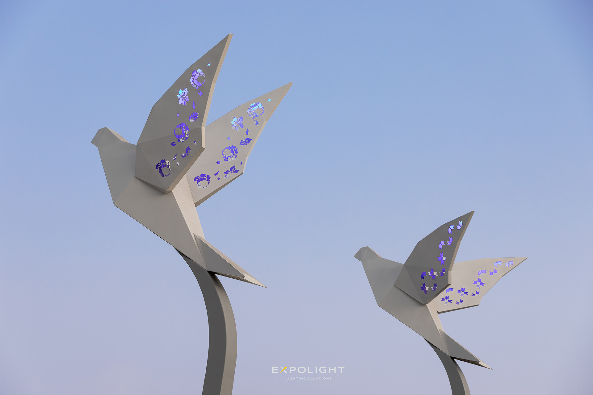 LIGHT FLOWERS: an interview with Nikolay Kabluka, the founder of Expolight