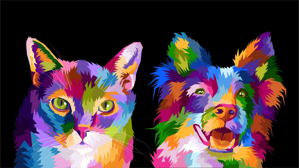Like a cat and a dog: who in the world is smarter, prettier and sweeter than everyone else?
